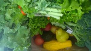 Mmm....veggies!